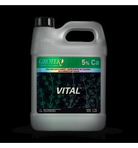 VITAL™